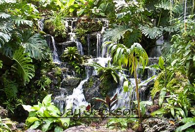 Waterfall in Singapore Botanical Gardens