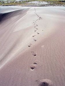 Great Sand Dunes National park, near Alamosa Colorado, my footprints