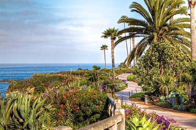 Walking path, Laguna Beach California just after sunrise