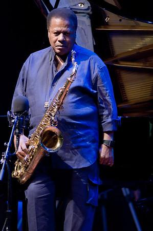 51st Monterey Jazz Festival - Wayne Shorter