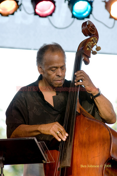 Cecil McBee  Photo - The 29th Annual Detroit International Jazz Festival, Detroit Michigan, August 29-31, 2008