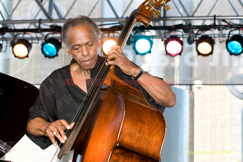 Cecil McBee  Photo - The 29th Annual Detroit International Jazz Festival, Detroit Michigan, August 29-31, 2008
