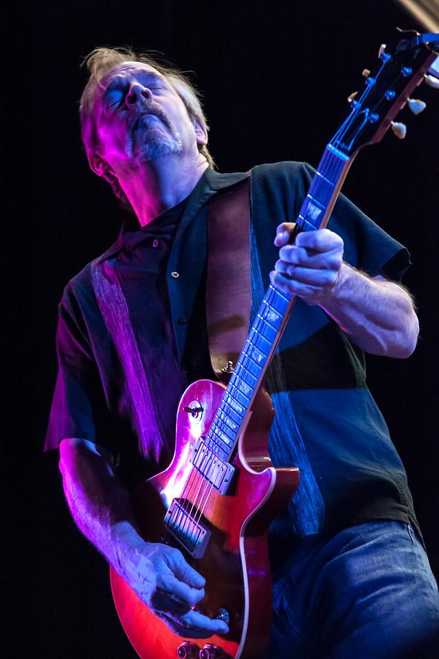 Alex Suter Guitarist