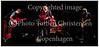 Trompetisten Tom Harrell med Jakob Bro Trio på scenen i Jazzhouse torsdag 7. juni 2012. Tom Harrell - trompet,  Jakob Bro - guitar, Anders Christensen - bas, Jakob Høyer - trommer  ----- <br /> Trumpeter Tom Harrell with Jakob Bro Trio on stage at the Jazz House Thursday, June 7, 2012. Tom Harrell - trumpet, Jakob Bro - guitar Anders Christensen - bass, Jakob Hoyer - drums Photo: © Torben Christensen © Copenhagen