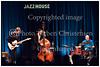 Jazzhouse, Jakob Bro, guitar, Thomas Morgan, bass, Joey Baron, drums