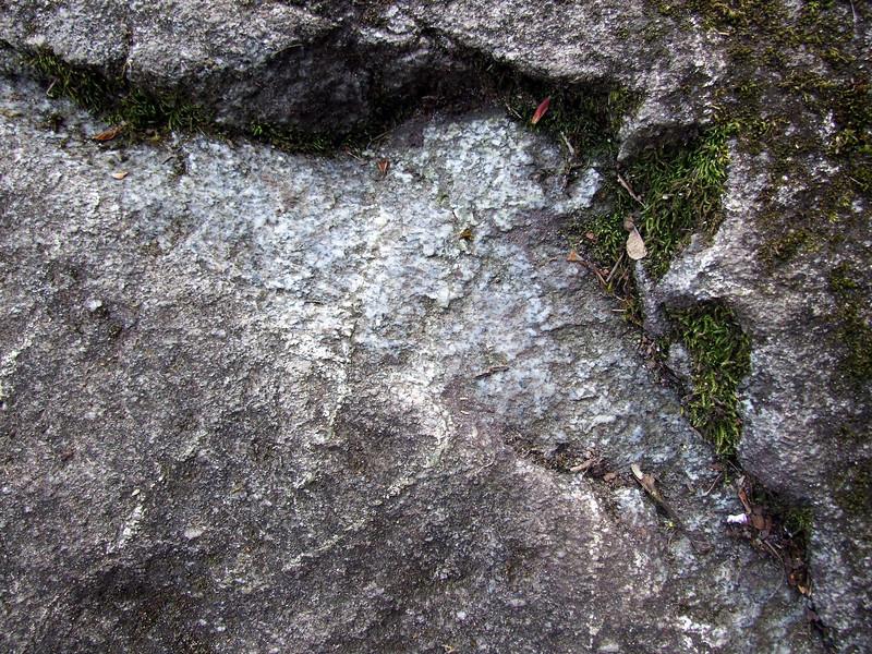 Ravenna Park Boulder, chipped spot.