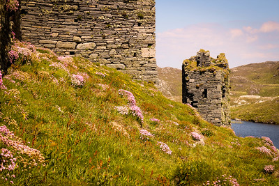 Cork, Ireland, Irish Ruins