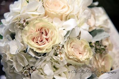 DSC_1618 florabella classic color