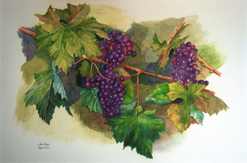 """Imminent Merlot"" 14"" x 19"" 2001 Watercolor."