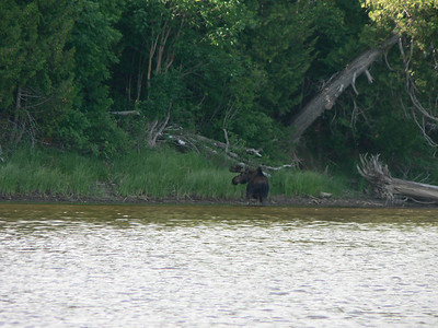Groundhog River 2010 -  (72 of 95)