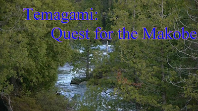 Temagami: Quest for the Makobe!