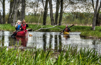 Minesing_Swamp_May2013 (51 of 263)_HDR