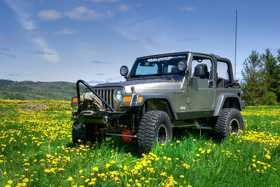 Lifted Jeep in Dandelion Field - Nova Scotia
