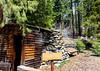 sequoia parents-9428