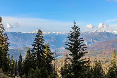 sequoia parents-9490