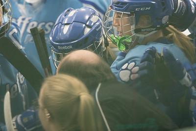 Jags Varsity at Edina Girls Hockey