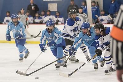 Jefferson Girls Hockey JV at Dodge County