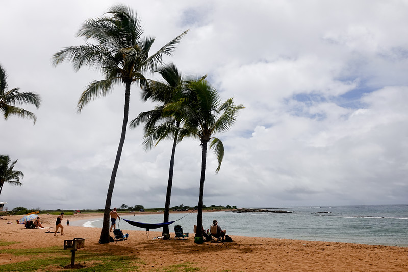 The dream: a hammock connected to two palm trees by the Hawaiian beach