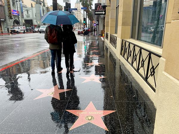LA in the Rain