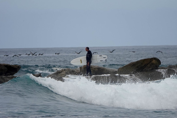 AS surfer stands on the rocks, surrounded bny birds, at Shaw's Cove in Laguna Beach