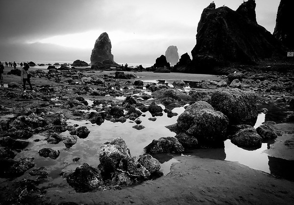 The tidepools near Haystack Rock come out in the morning, during low tides. The tides change daily, so tourists need to check tide timetables to find the best times to see the pools.