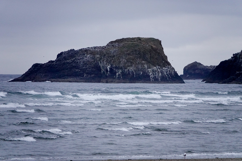 The waters and rocks of coastal Oregon