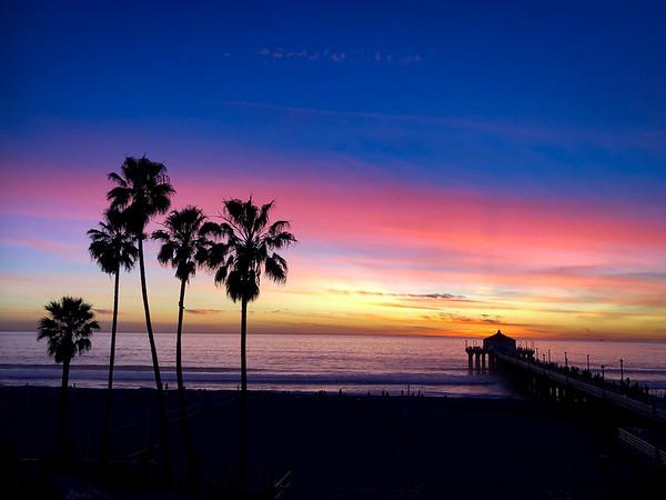"""""""Pink Skies & Palm Trees"""""""