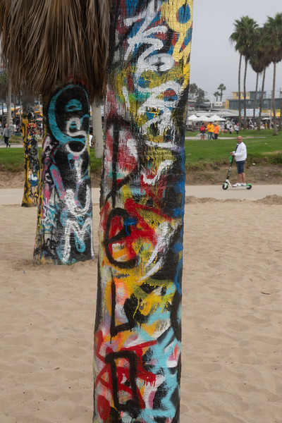 Even the trees get painted in Venice Beach.