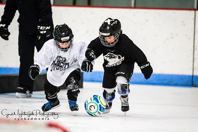 Jefferson Youth Hockey
