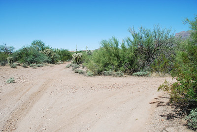 No sign and can go 2 ways... Right takes you to the parking straight goes to the BadLands and then to GoldField Road.