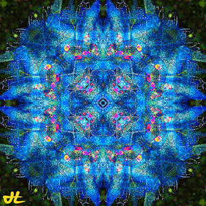 JE9_9392-Edit-orb6