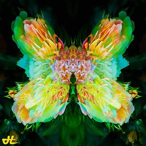 JR8_6542-Edit-smplf-mprsn-orb4
