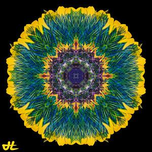 JE8_9873-Edit-orb5
