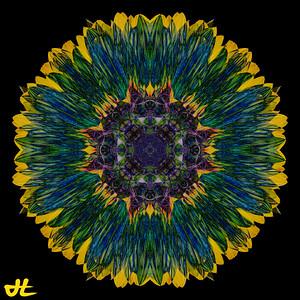 JE8_9873-Edit-orb4