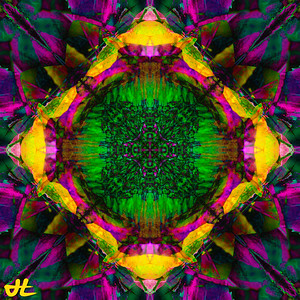 JR8_5045-orb3