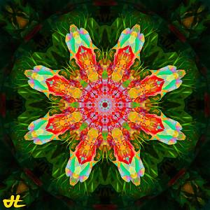 JR8_6542-Edit-smplf-mprsn-orb11