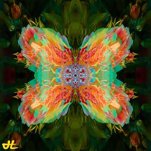 JR8_6542-Edit-smplf-mprsn-orb6