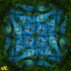 JE9_9392-Edit-orb3