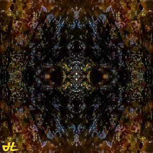 OT9_5381-orb4