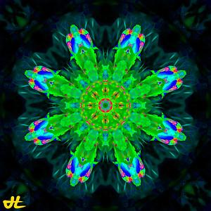 JR8_6542-Edit-smplf-mprsn-orb12