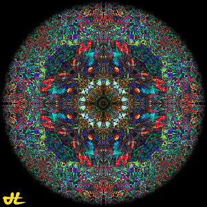 IMG_7284-Edit-orb5