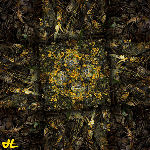 JR9_6785-orb1