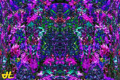 FY5_7938-orb1