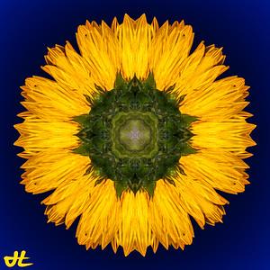 JE8_9873-Edit-orb3