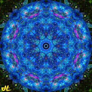 JE9_9392-Edit-orb7