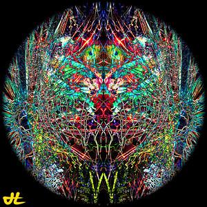JN7_4873-Edit-orb3
