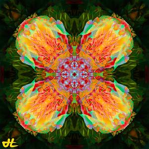 JR8_6542-Edit-smplf-mprsn-orb9