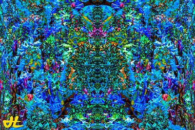 FY5_7938-orb3