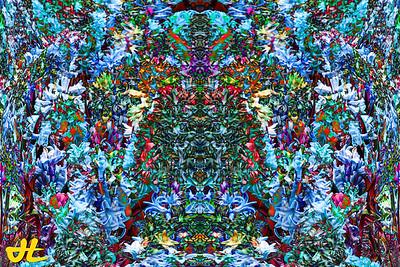 FY5_7938-orb4