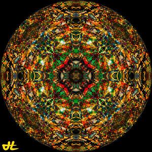 JE5_1038-Edit-orb5